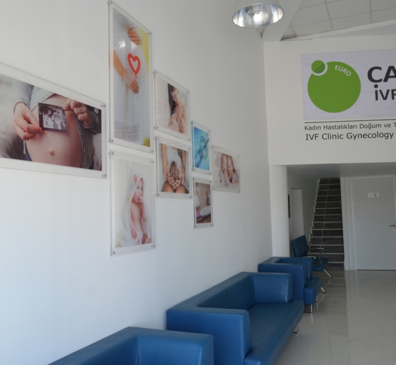 eurocare-ivf-waiting2